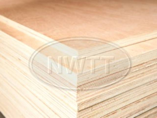Malayan Hardwood (Throughout) Plywood