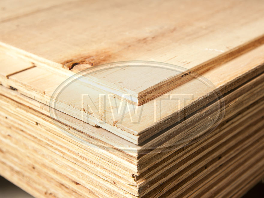 Sheathing Plywood Sheets