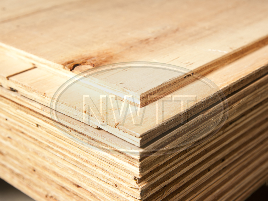 Sheathing plywood l nwtt for Plywood sheathing thickness