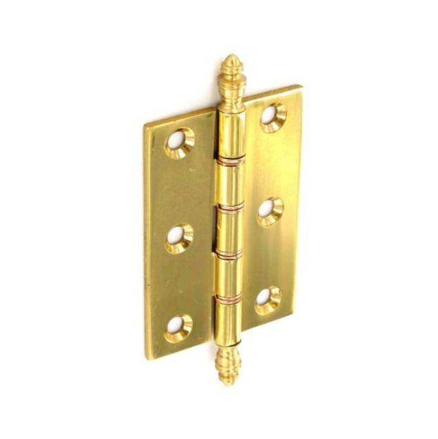 DSW Brass Hinge with Finals