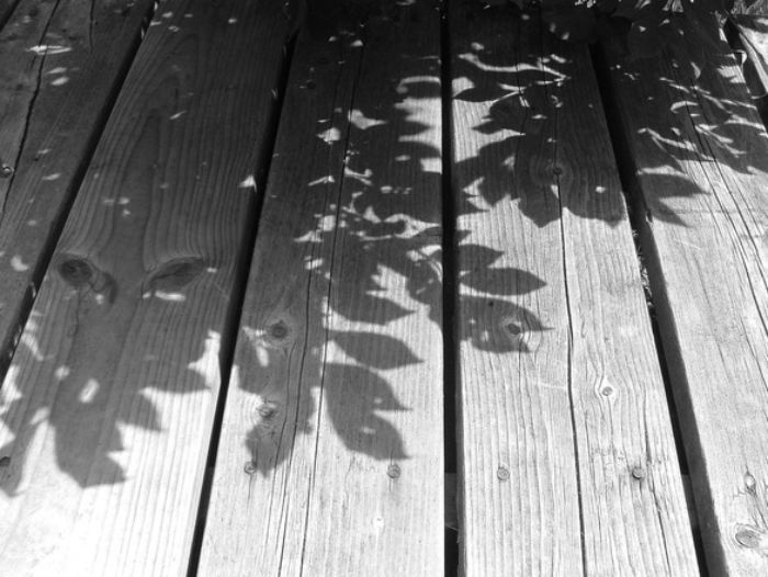 shadows-on-the-deck-1502336